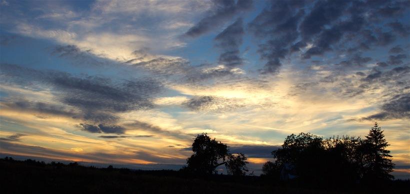 sunset96165