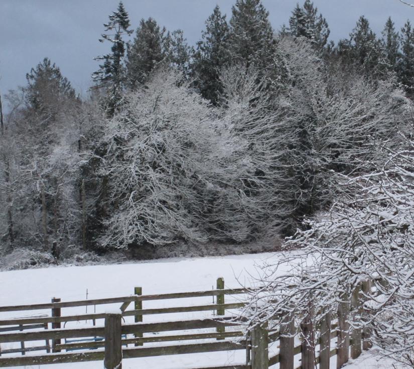 winterfarm4