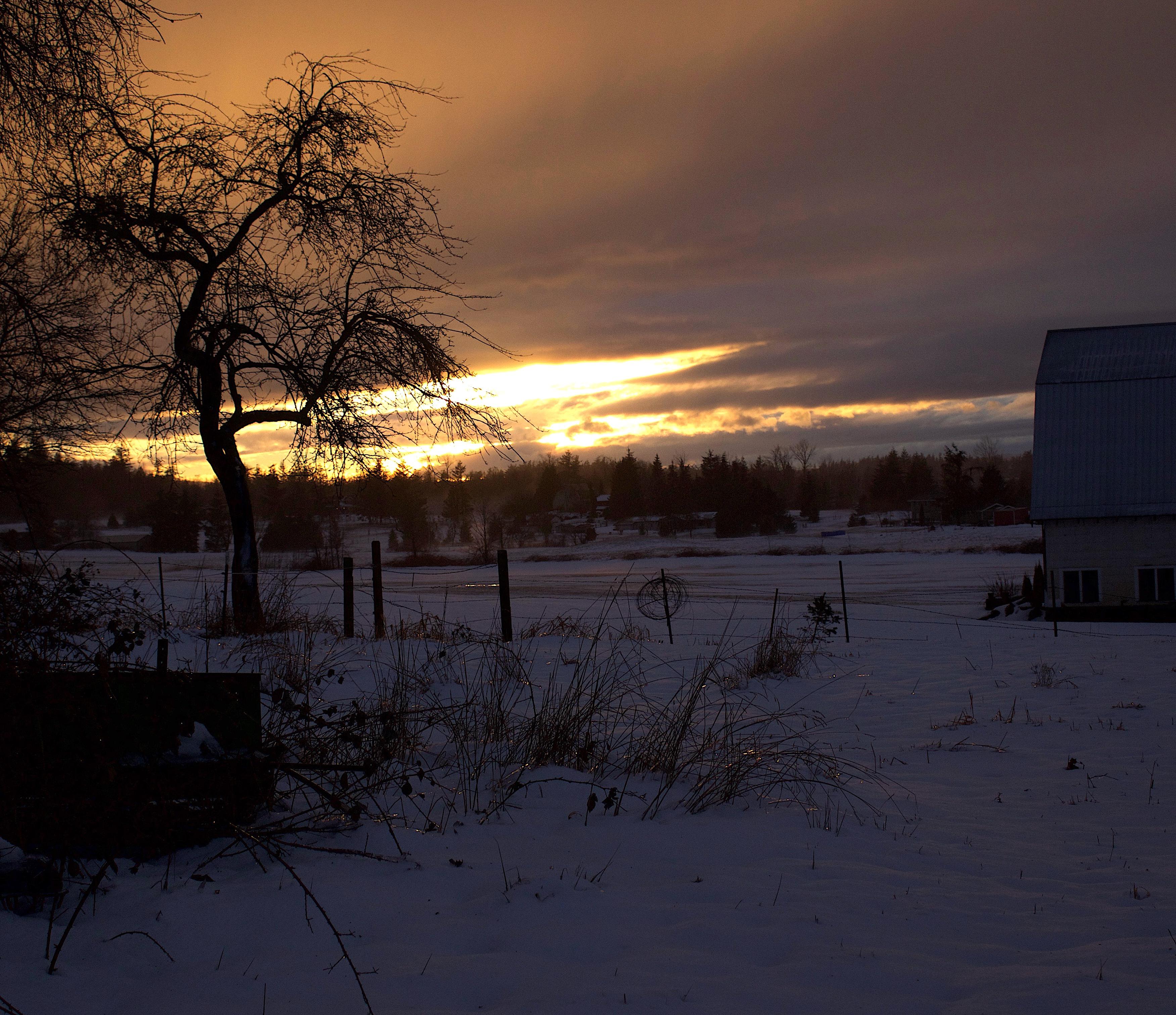 snowglow3