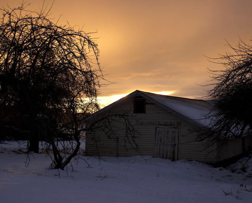 snowglow5