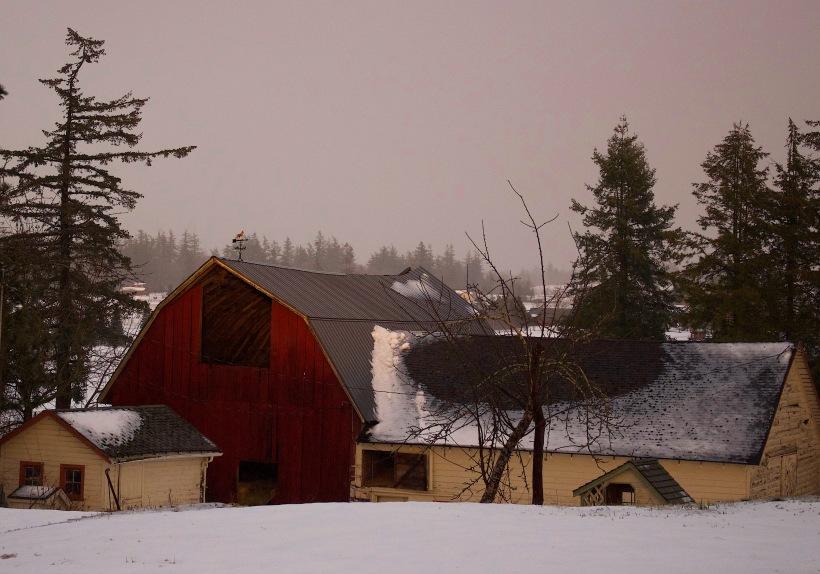 snowglowfarm