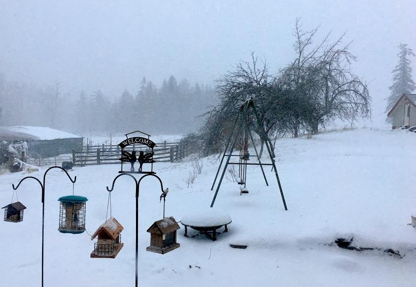 snowyfarming
