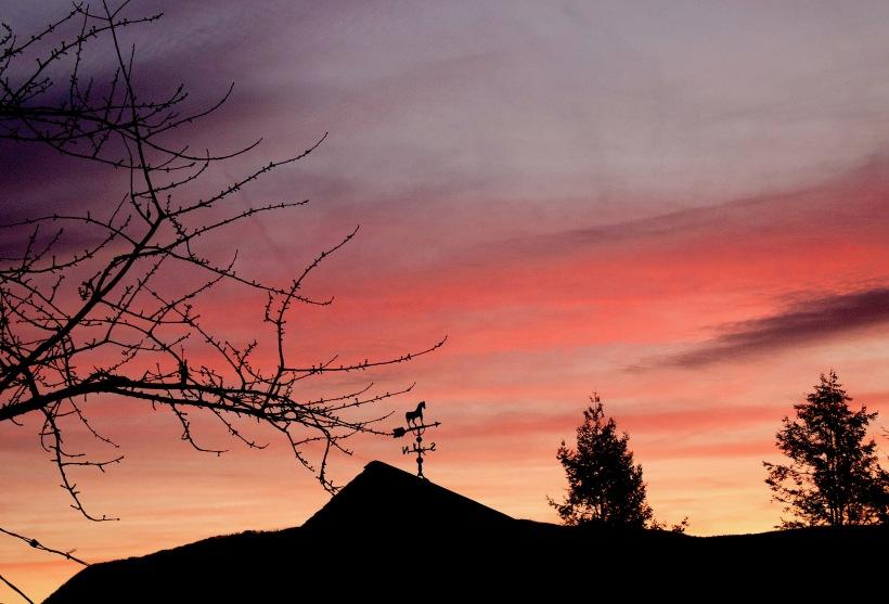 sunrise214176