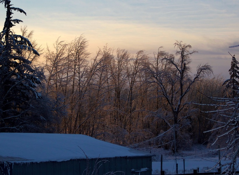 sunrise26171