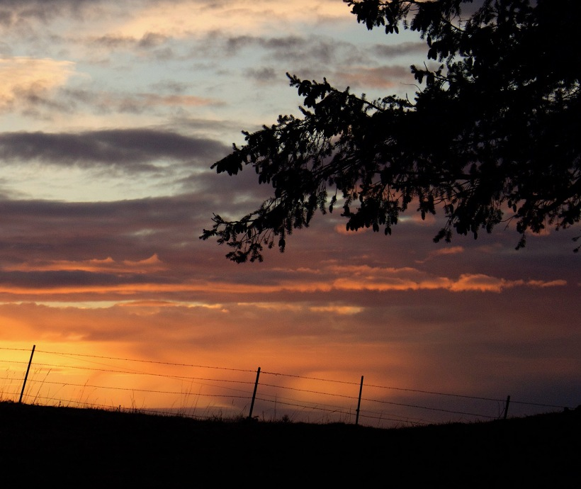 sunset121173