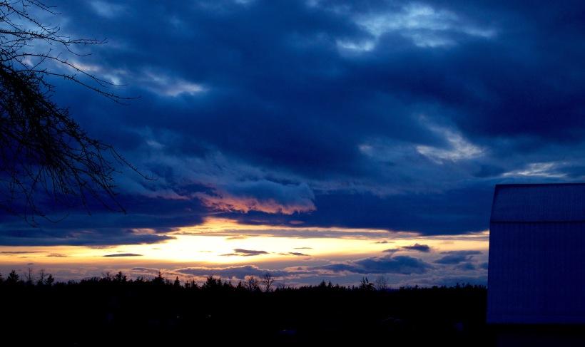 sunset216171