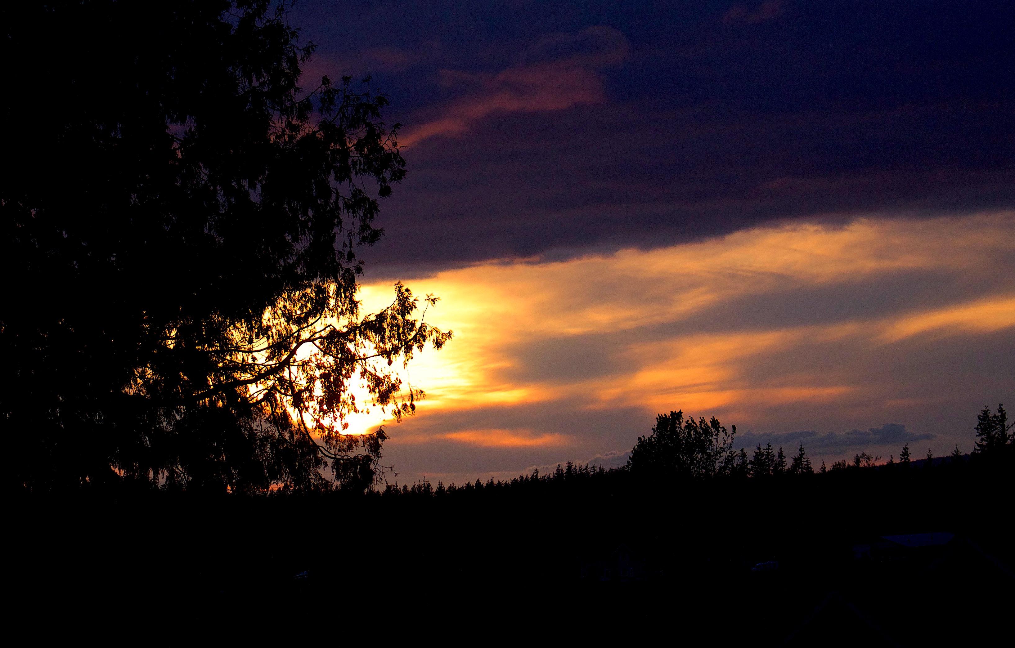 sunset51171
