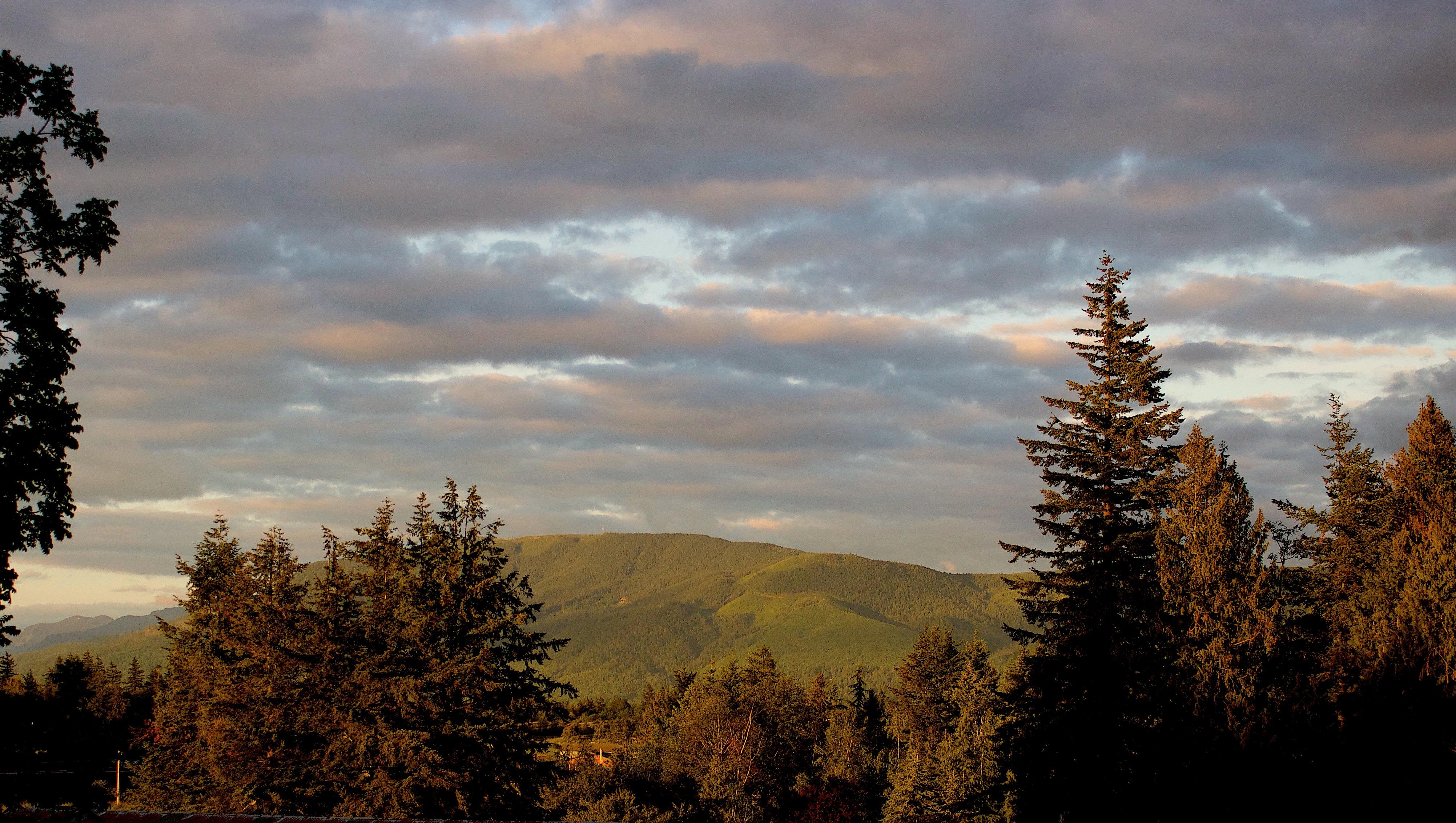 eveninglighthill3