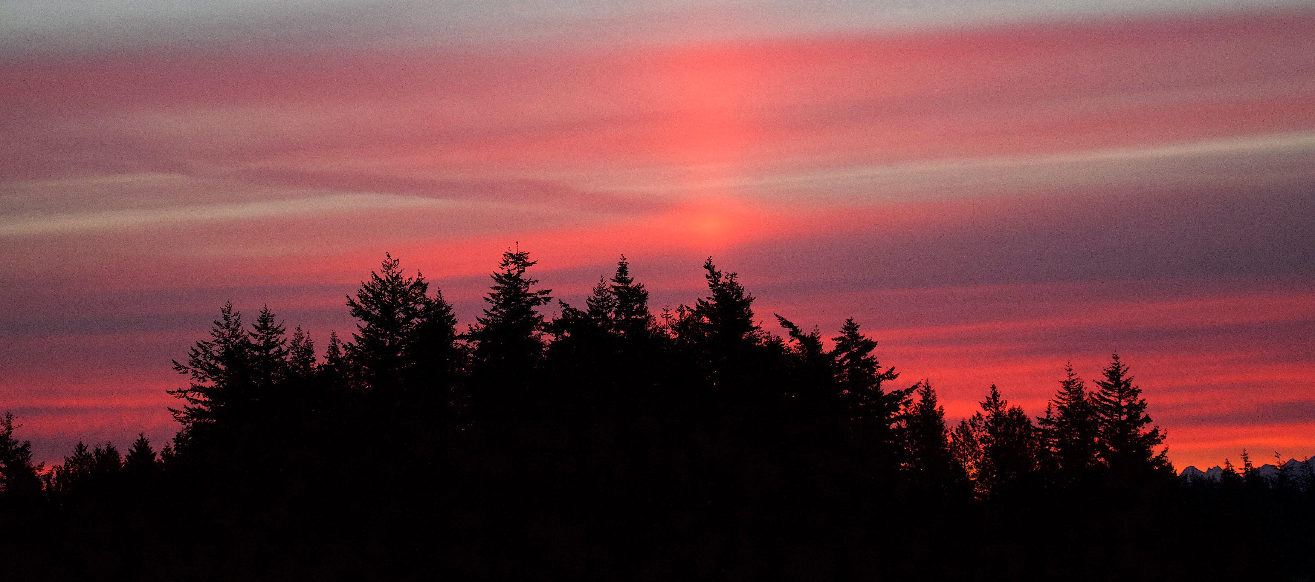 sunrise66172