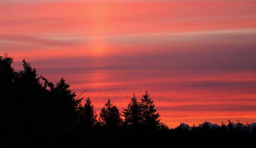 sunrise66173