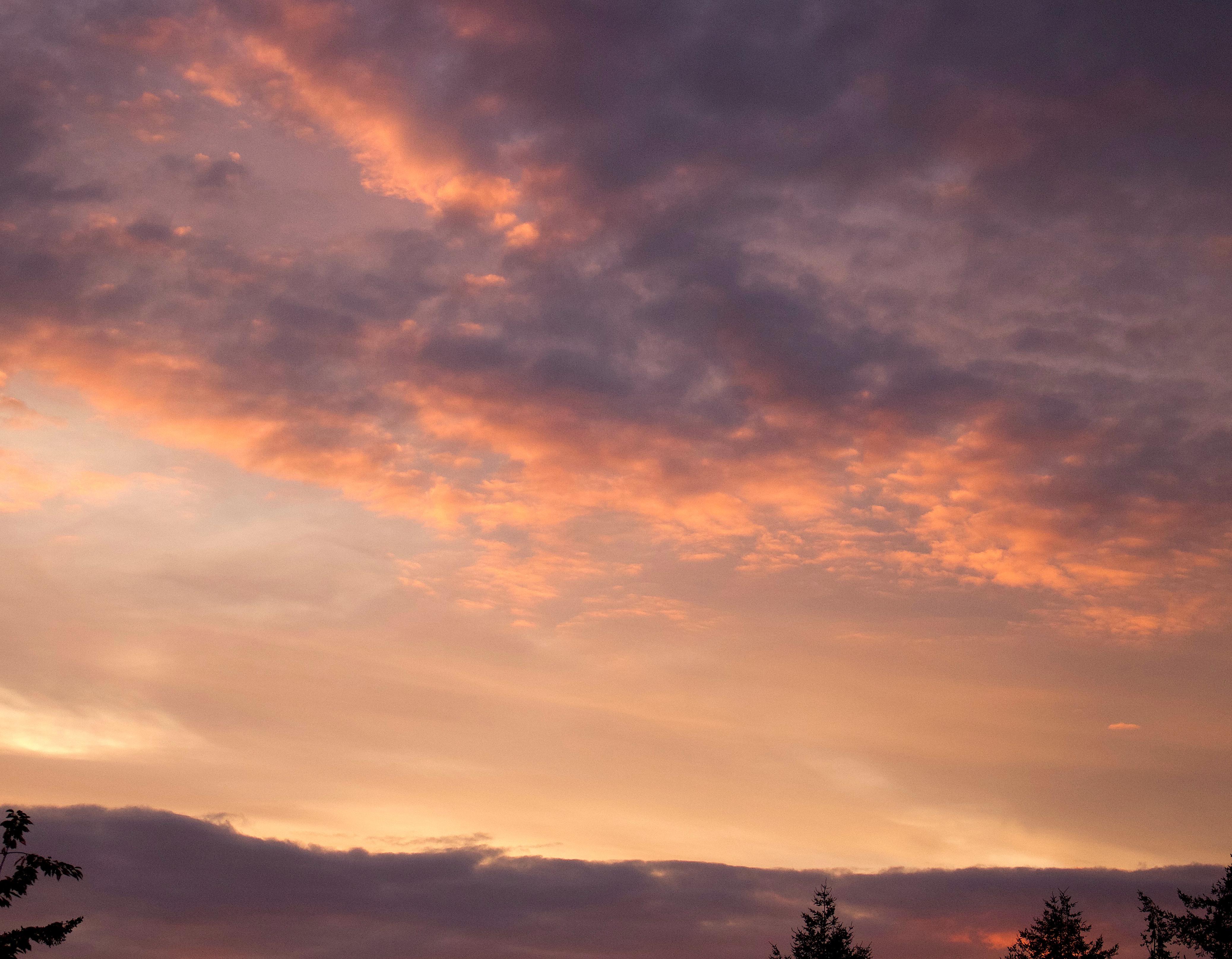 morningsherbet2