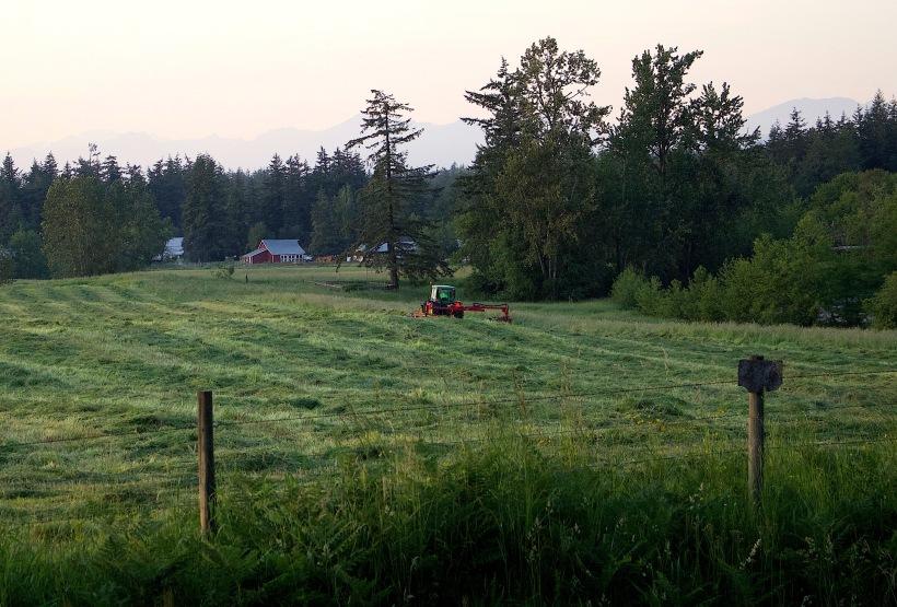 mowingfield