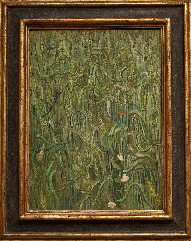 WLANL_-_MicheleLovesArt_-_Van_Gogh_Museum_-_Ears_of_wheat,_1890