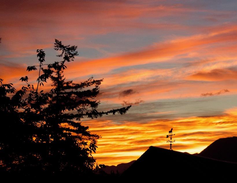 sunrise818172