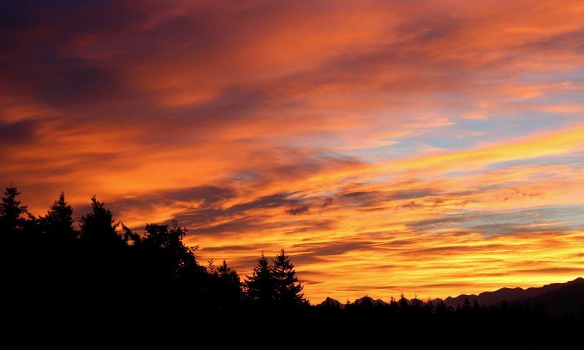 sunrise818175