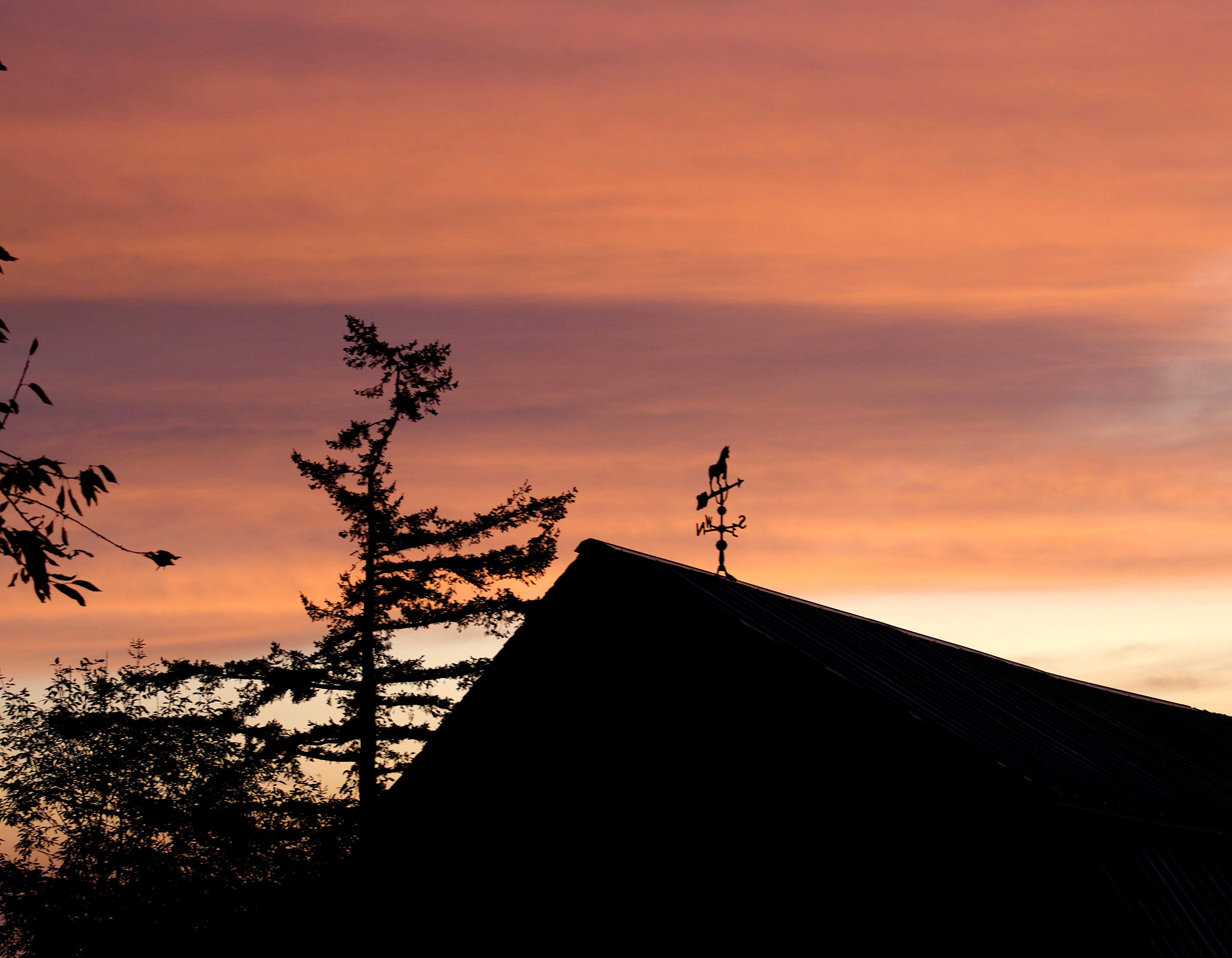 sunrise916175