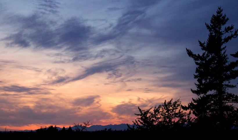 sunset915172
