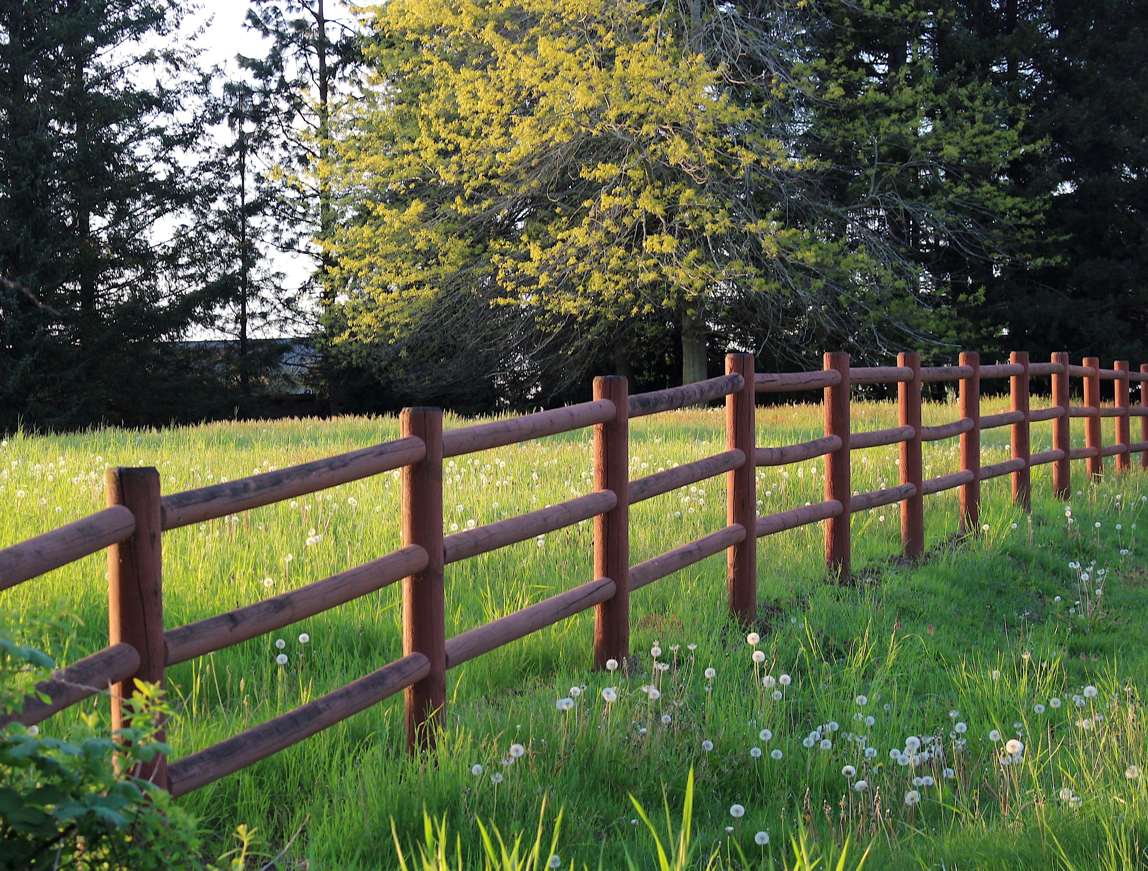 fenceline2