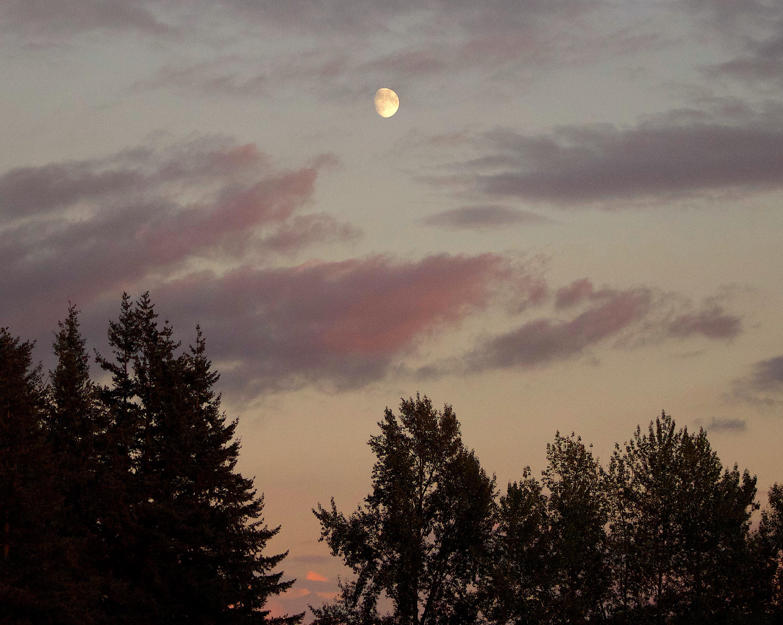 moonrise10117