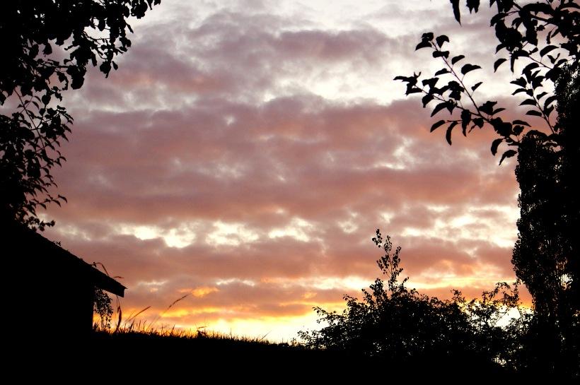 sunset10117