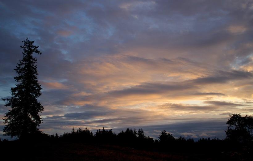 sunset1012173
