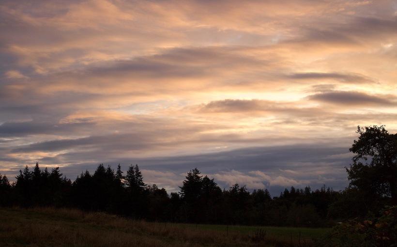 sunset1012176