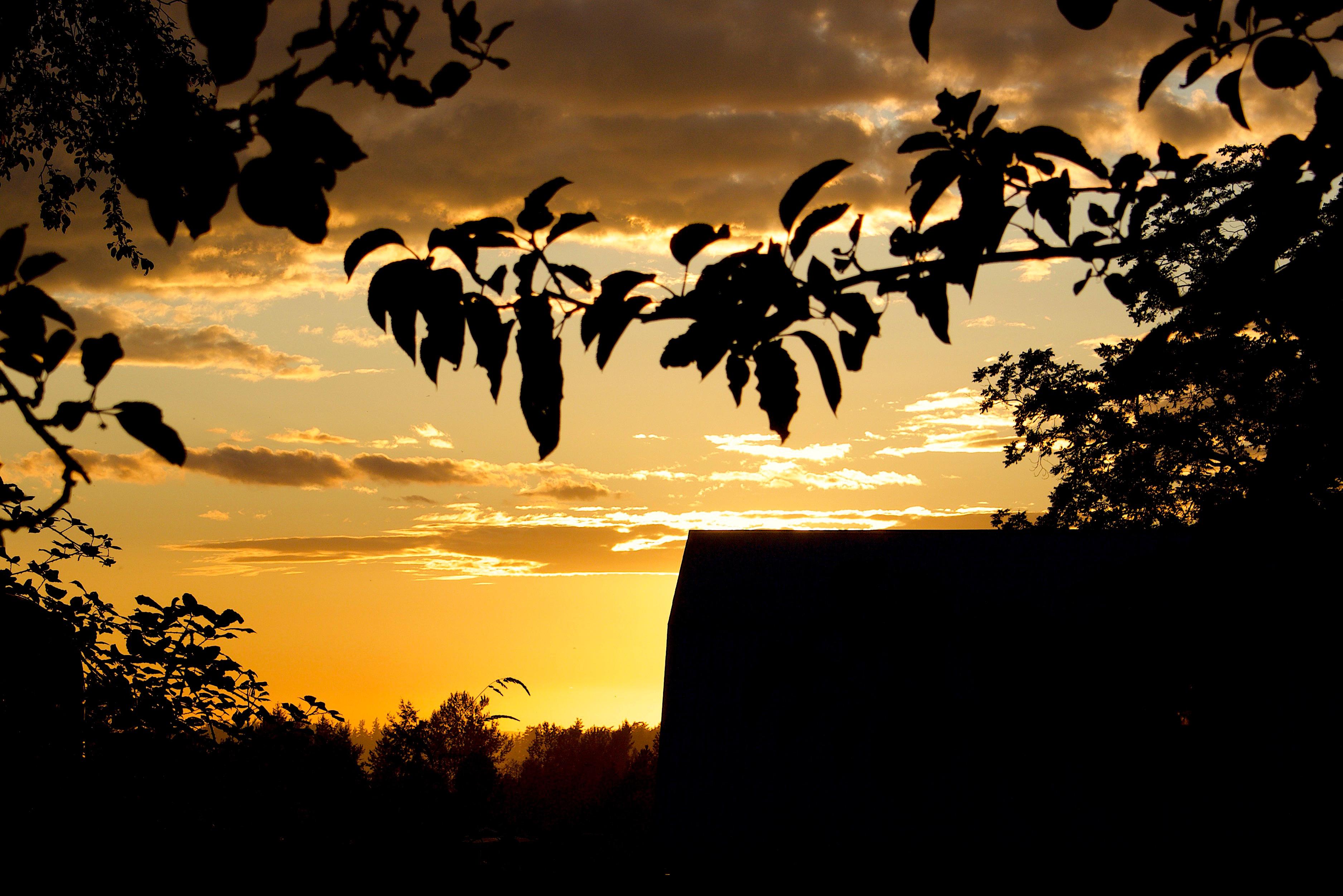 sunsetbarnlight