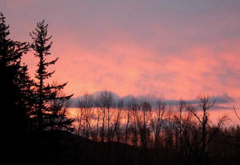 sunrise1125172
