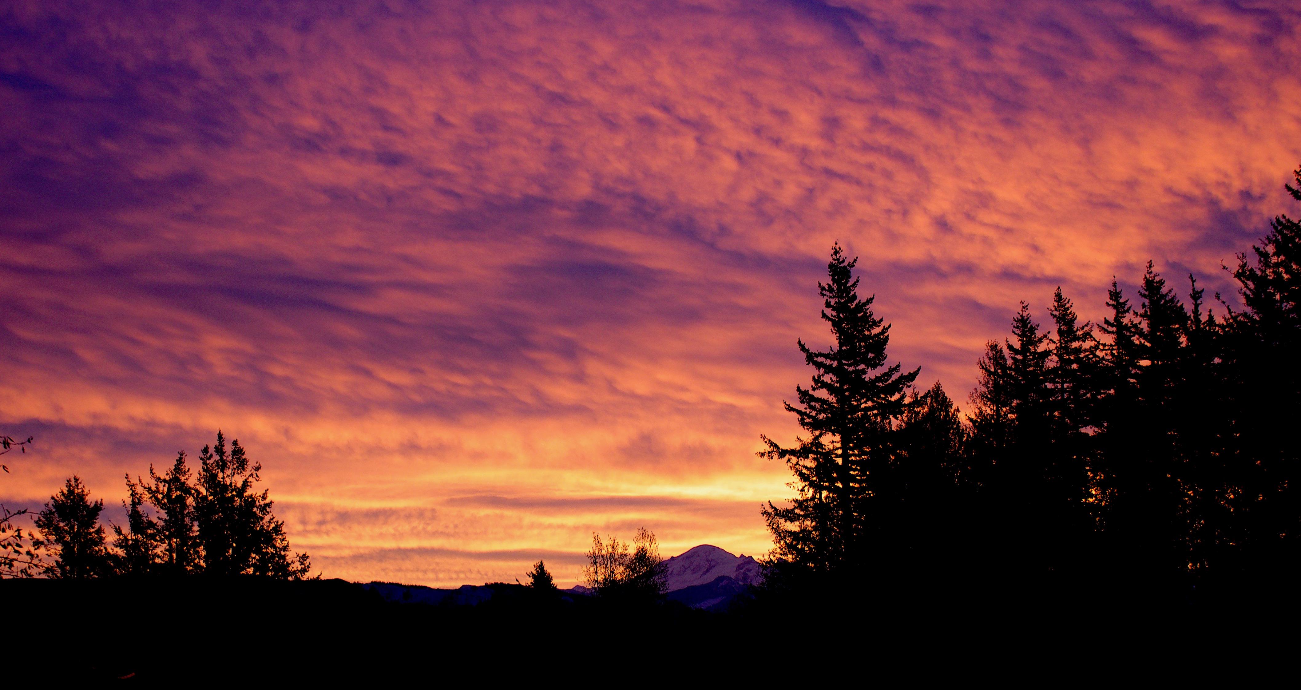 sunrise117171
