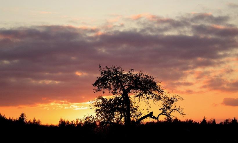 sunset111017