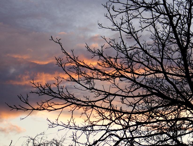 sunset1123171