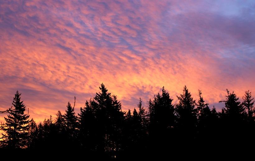 sunrise10172
