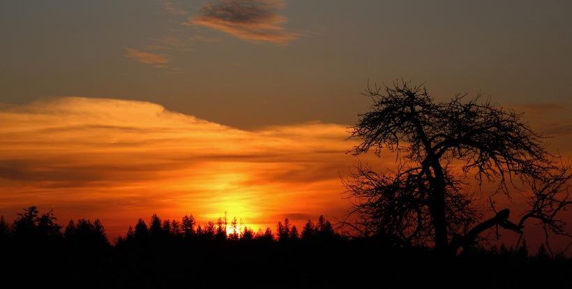 sunset1210171
