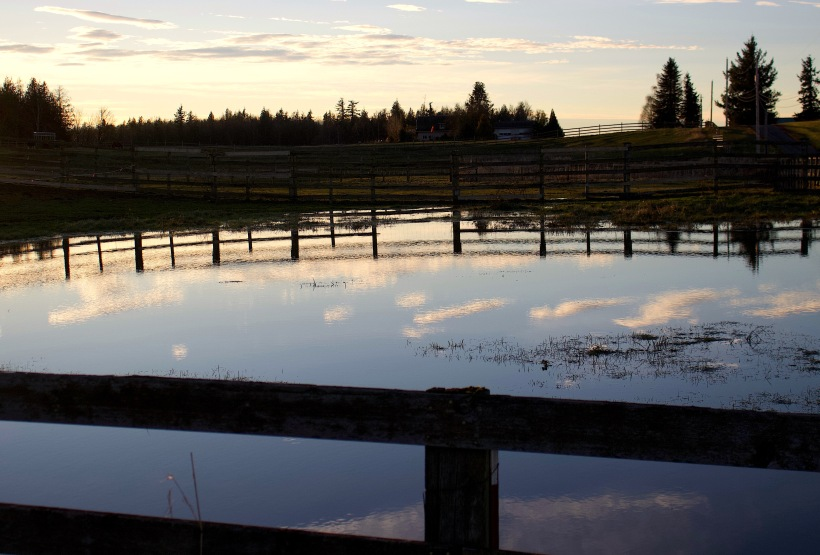 reflecting1