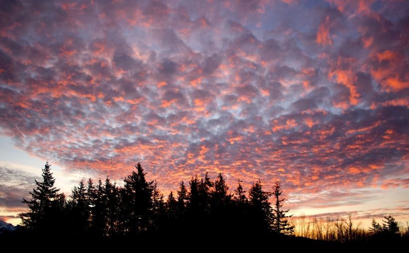 sunrise11181
