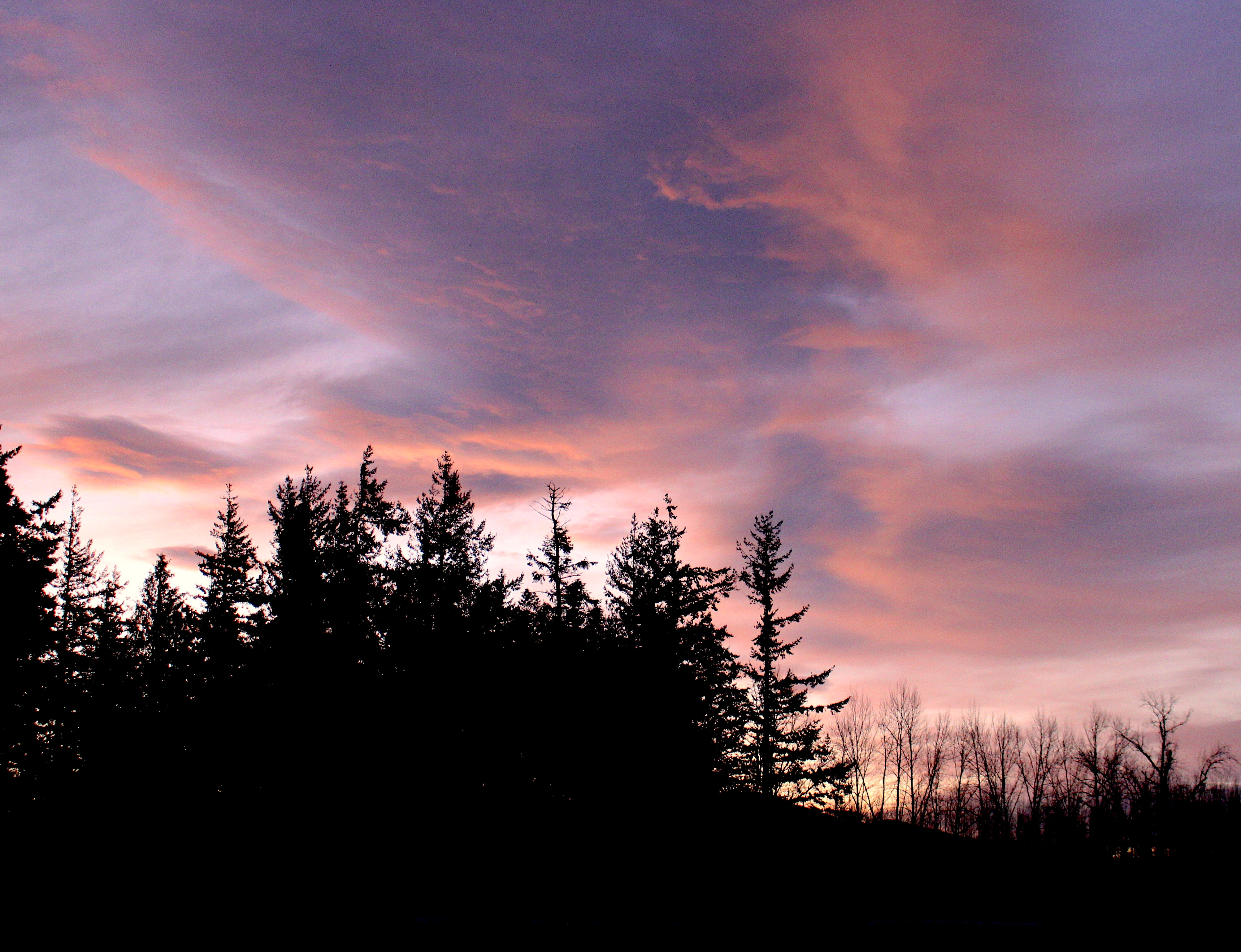 sunrise115181