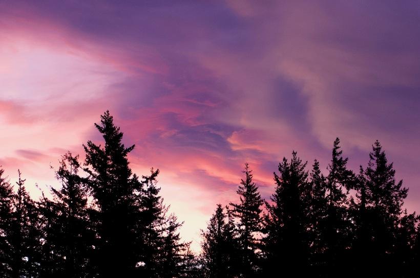 sunrise115182