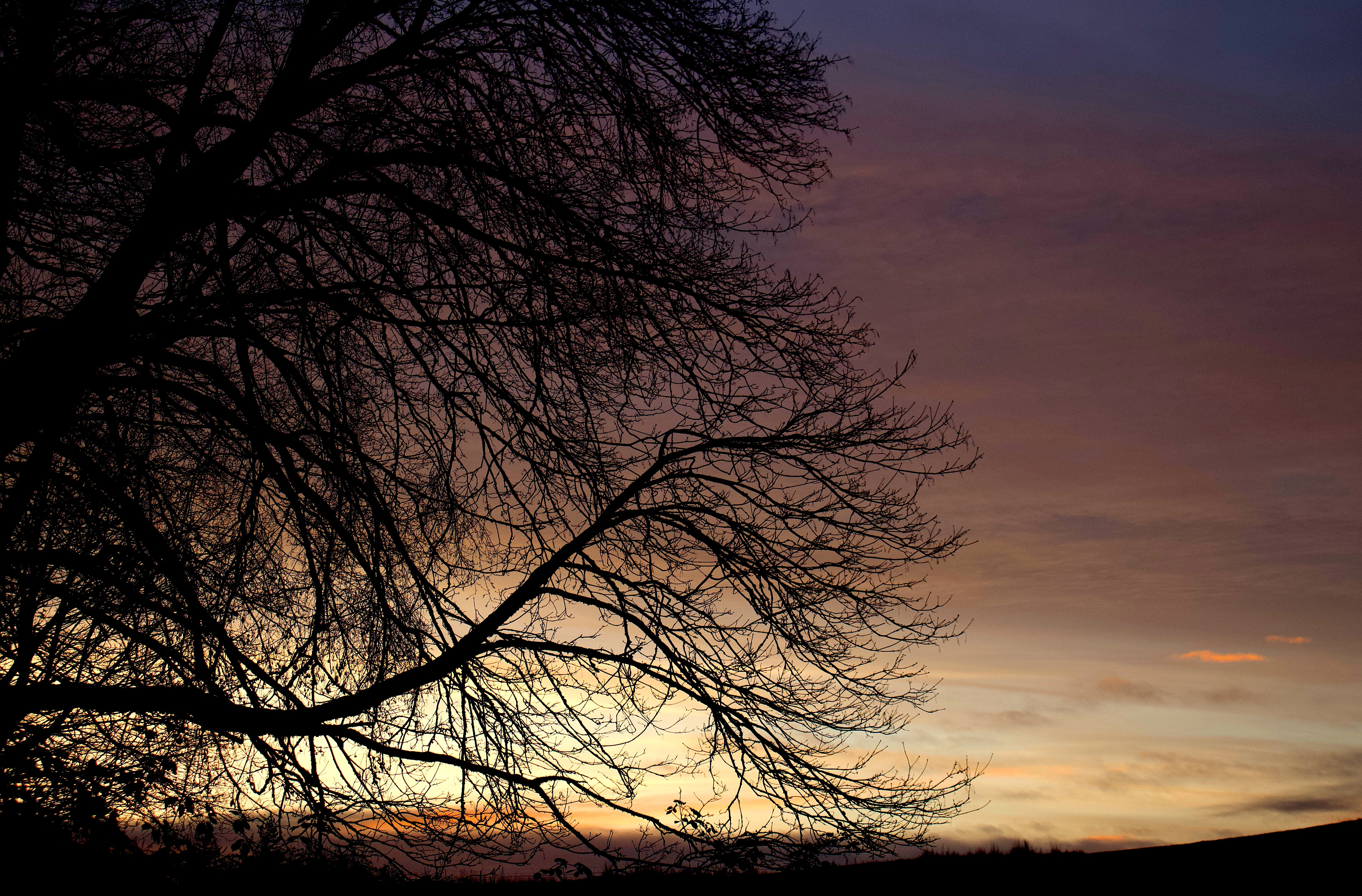 sunset113181