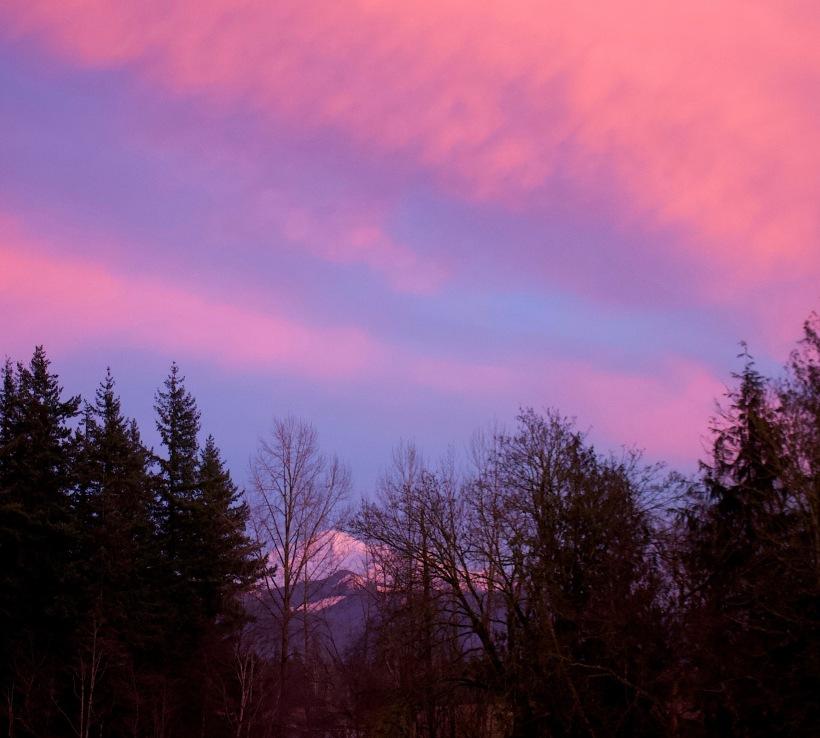 sunset1131810