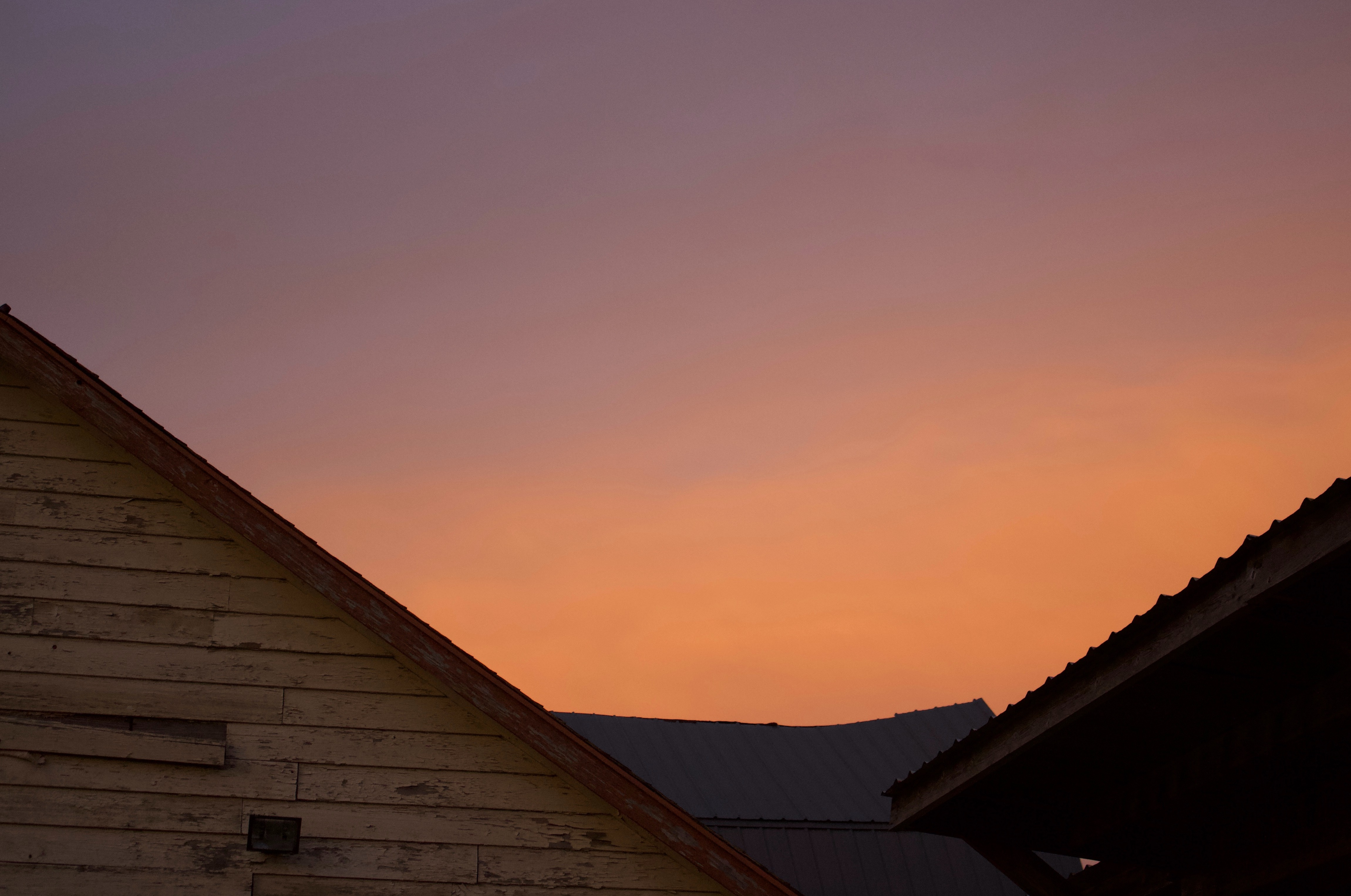 sunset1131816