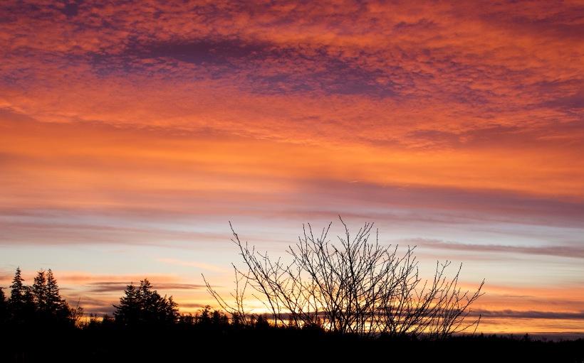 sunset113185