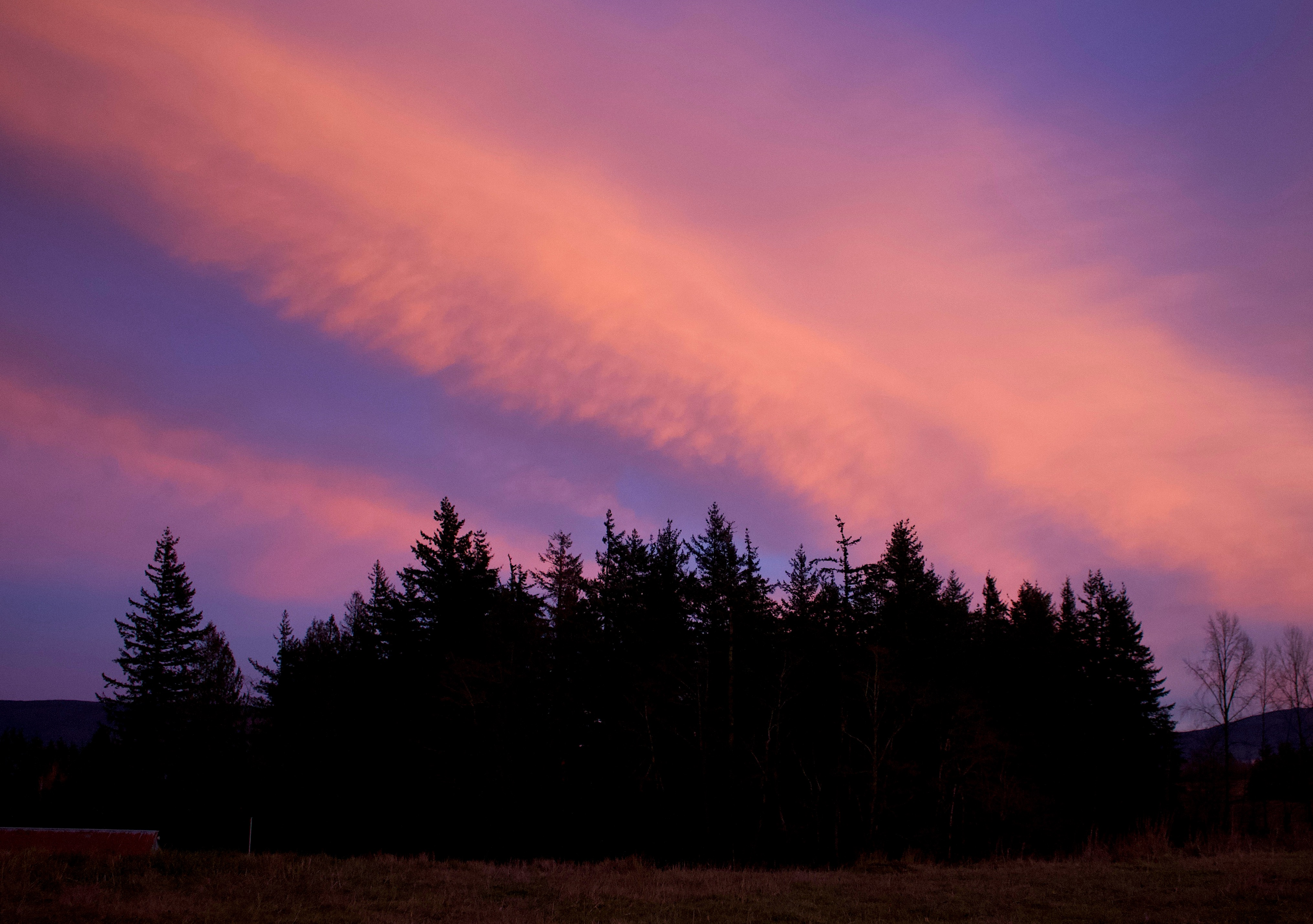 sunset113188
