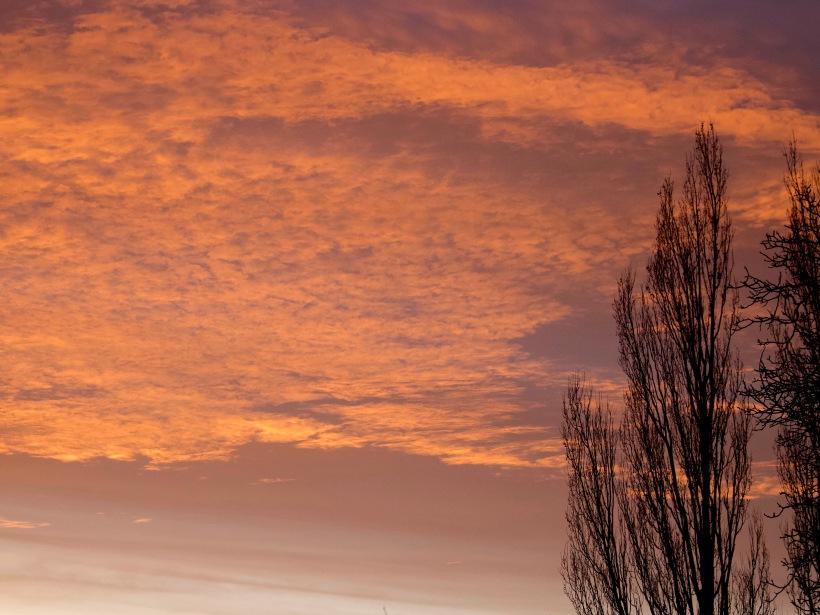 sunset113189
