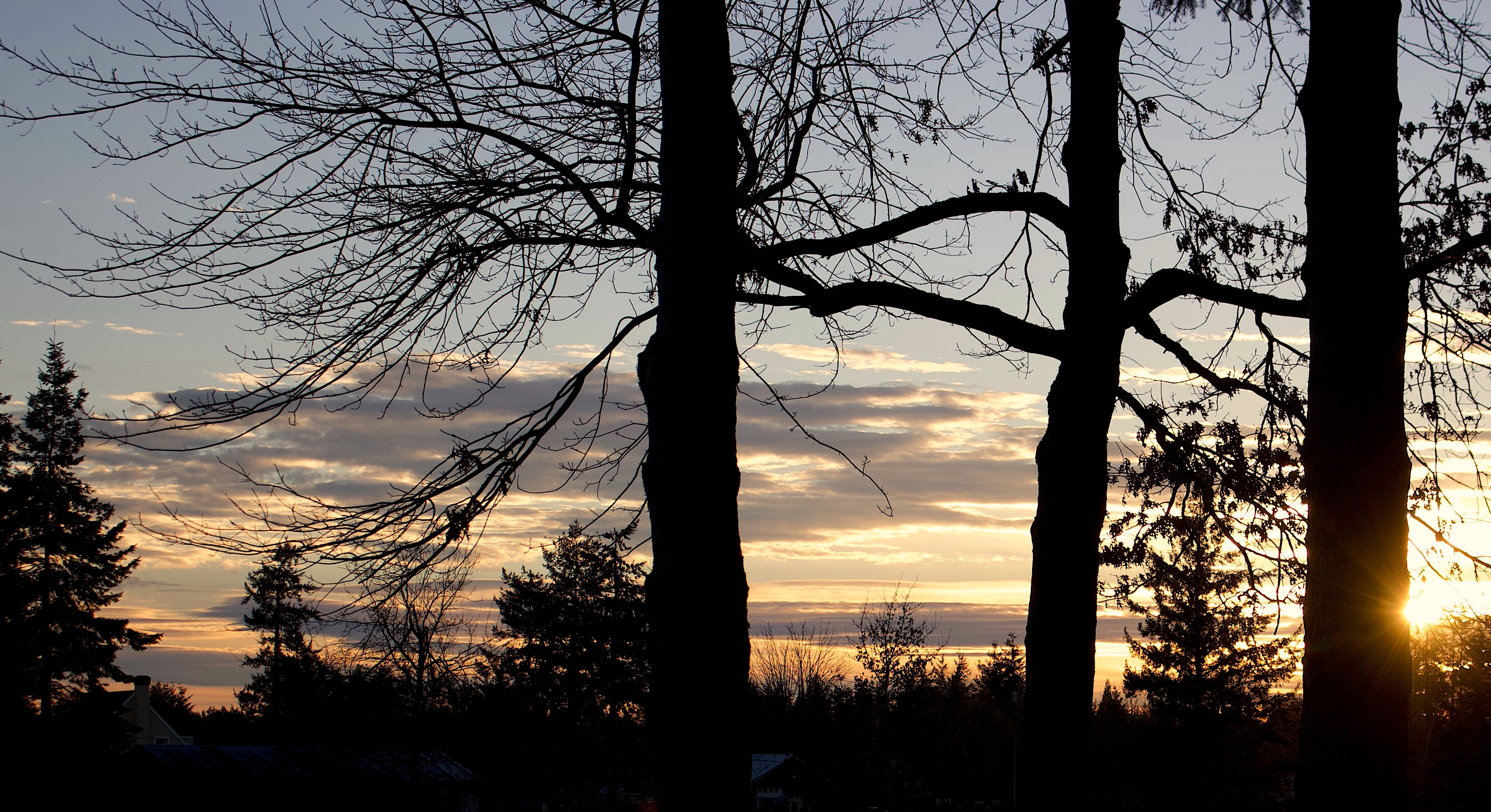 sunset114181