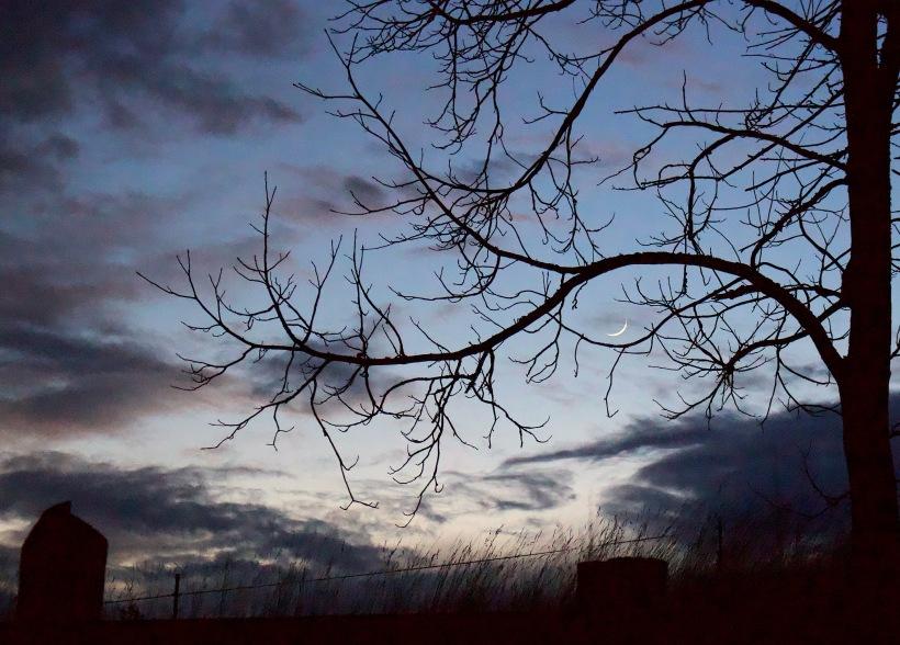 sunset118181