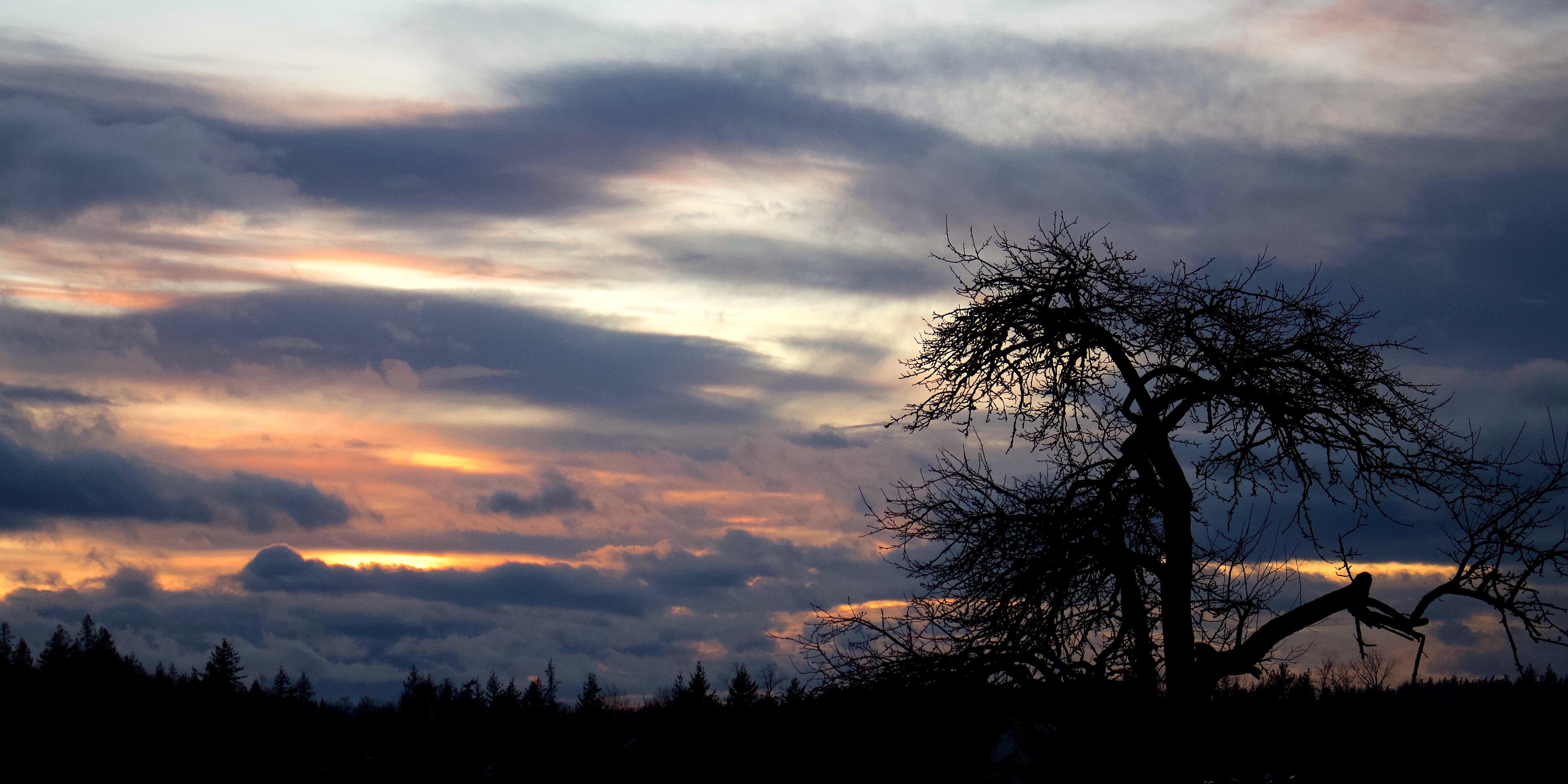 sunset125181