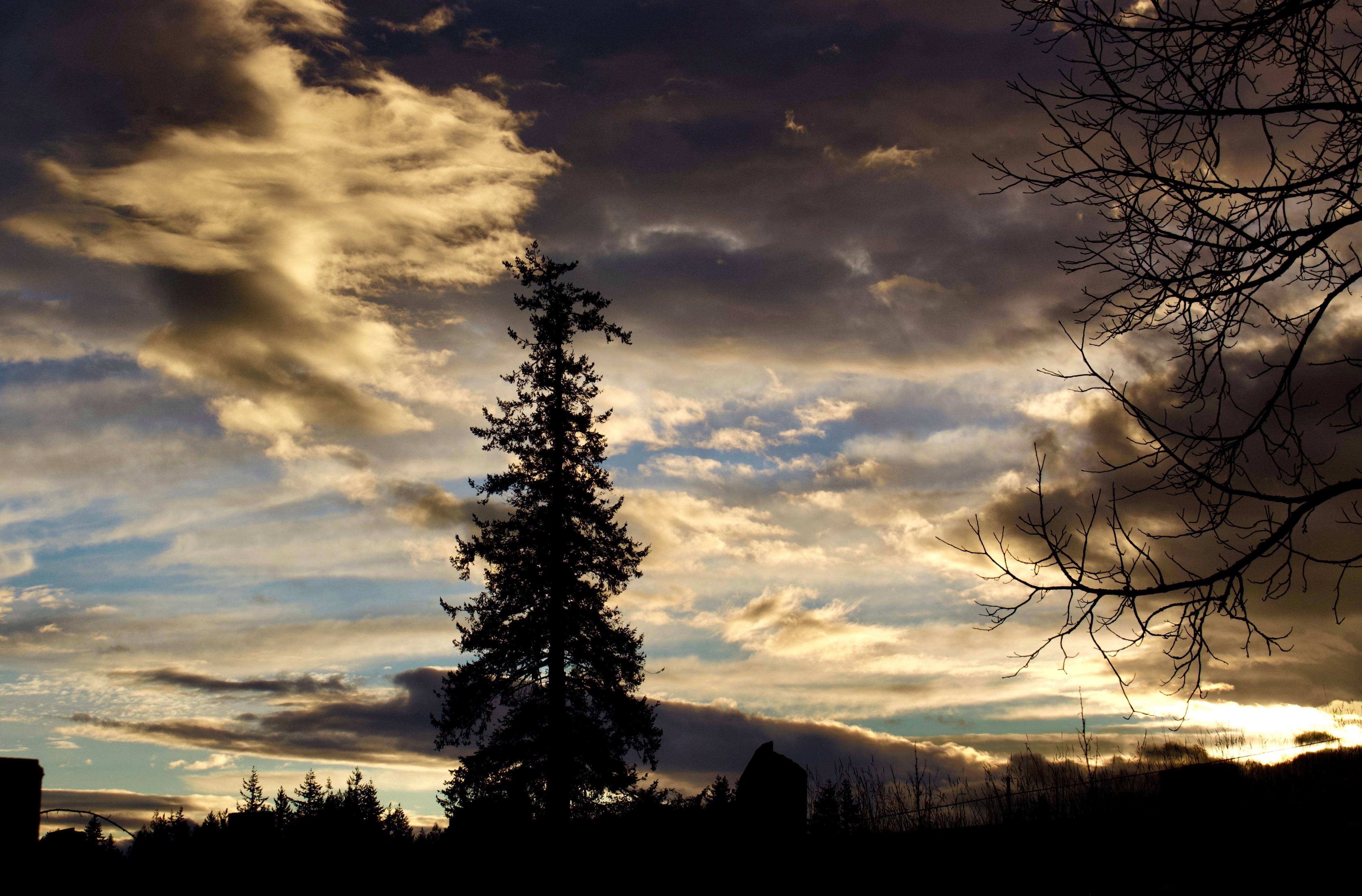sunset15188