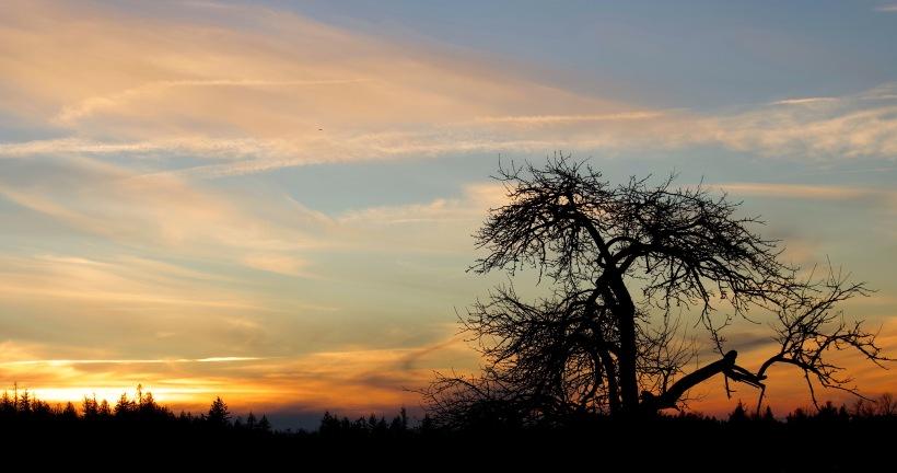 sunsetnewyears