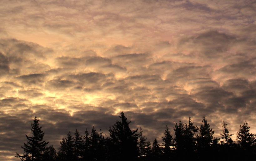 sunrise213181