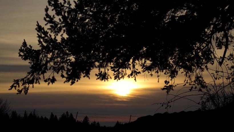 sunset210181